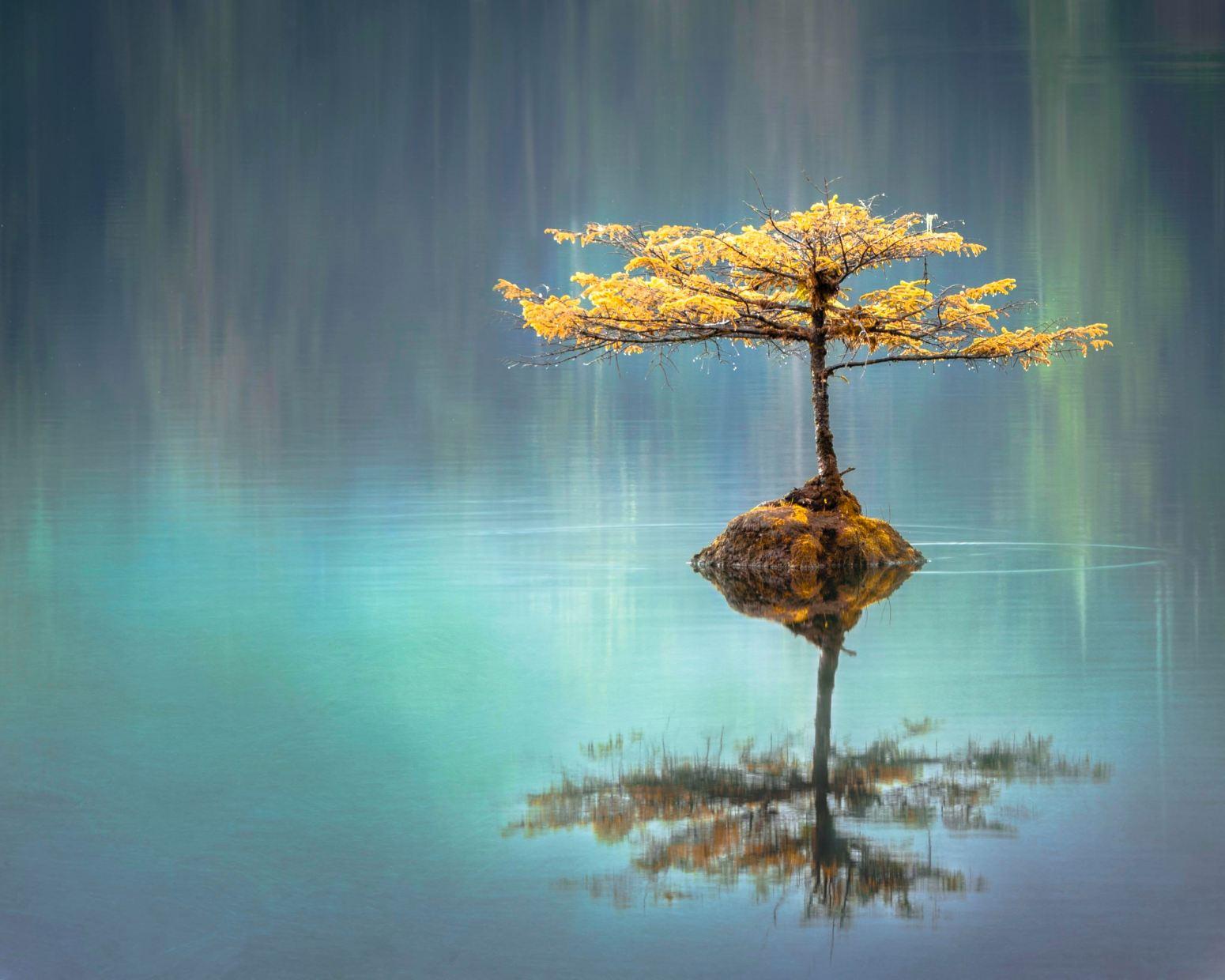 چگونه عدم توازن رابشناسیم و به آرامش مبدل کنیم؟