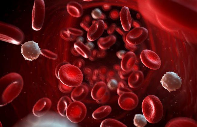 تطهیر خون در طب سنتی به چه صورت است؟
